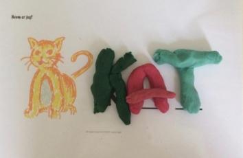 ailefo økologisk modellervoks kat